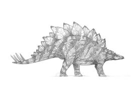 Stegosaurus Pencil by morganobrienart