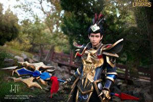 jarvan IV warring kingdom by okageo