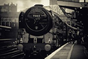 Steam Ahead by fbuk