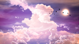 Birds Flying on the sky Wallpaper 1920x1080 HD by yattamigeru