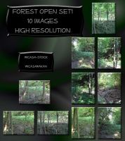 Forest open set wicasa-stock by Wicasa-stock