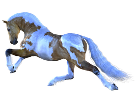 Horse 5 PNG by Variety-Stock