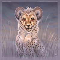 Smile at Me Cheetah by balaa