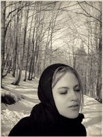 To the snow by daaram