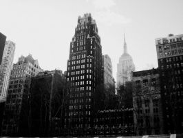 New York City by sweetcarolinee1