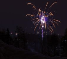 Happy New Year by Elenihrivesse