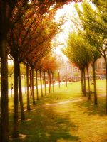 van gogh park, amsterdamn 2006 by theFATpirate
