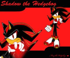 Shadow the Hedgehog Wallpaper by Mery-the-Hedgehog