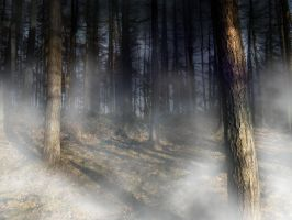 Manipulated Forest Stock by The-strawberry-tree