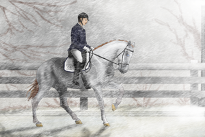 Extreme Dressage by AniaJag