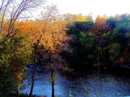 Fall in Milwaukee by Pyro82