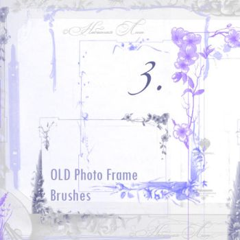 Old Photo Frame Brushes 3 by RotFuchs