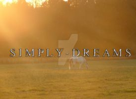 Horse Shot I by Simply-Dreams