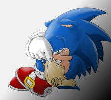 Sonic Sad by S-concept