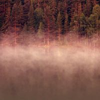 Lake Mist by DilekGenc