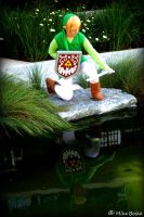 Reflection - Toon Link by nekomatalee