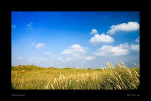 within wind and weather by hermik