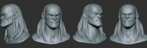 Head Study by GrayGinther