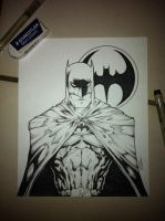 Same Bat Different Style by acosorio