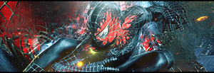 Spiderman Signature by Andgula