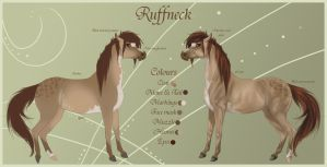 Ruffneck Reference Sheet by Paardjee