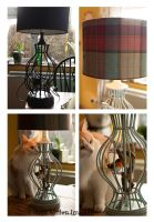 diy lamp 2 by AnjaMillen