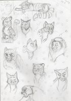 Cats (begining) by Lapapolnoch