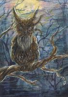 AcEO 035: Up there in the tree by The-Purring-Teapot