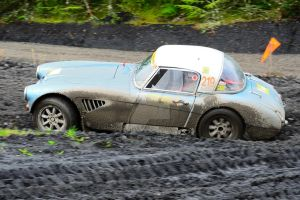 No way to treat a Big Healey by Willie-J