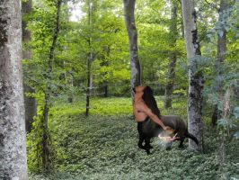 The Centaur and the Fairy on a Journey by trull9999