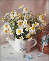 small flowers in watering can 2 by LuciaBlueFlower