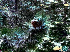 snow cone hdr by DCRIII