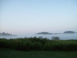 Feeling Foggy:Local Landscapes by southernstingray