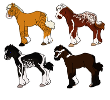 horse adopts by J4-Coltrain