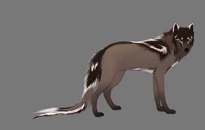 Canine Character -Not Complete Ref- by HGPainter