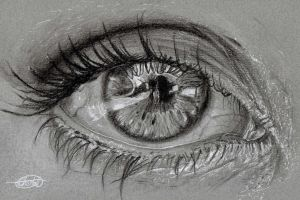 Eye On Grey by Char10tte