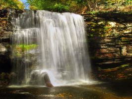 Ricketts Glen State Park 50 by Dracoart-Stock