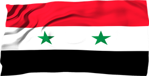 Flags of the World: Syria by MrAngryDog