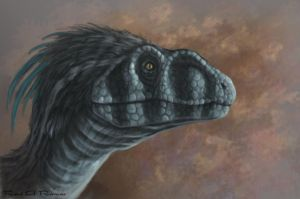 Raptor Painting by daitengu