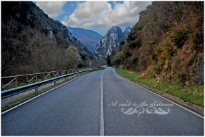 .:A road to the distance:. by aliveruka