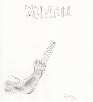 Griffes Wolverine by JLA23