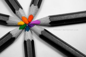 Colours of Life by mthows1