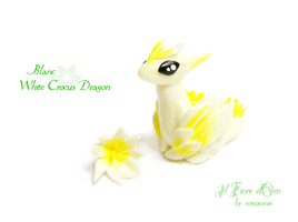 Blanc, White crocus dragon by rosepeonie