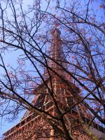 Paris au Printemps by Emily-Pictures