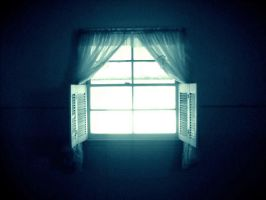 the window. by minuitserenite