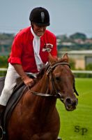 The Races 4 by Savage-PhotographyAU