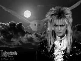 Jareth Moon by kiarajareth