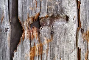 weathered boards by janhatesmarcia