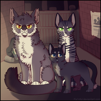 City cats by Pa1nful