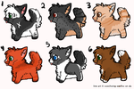 puppy adopts by echoing-adopts